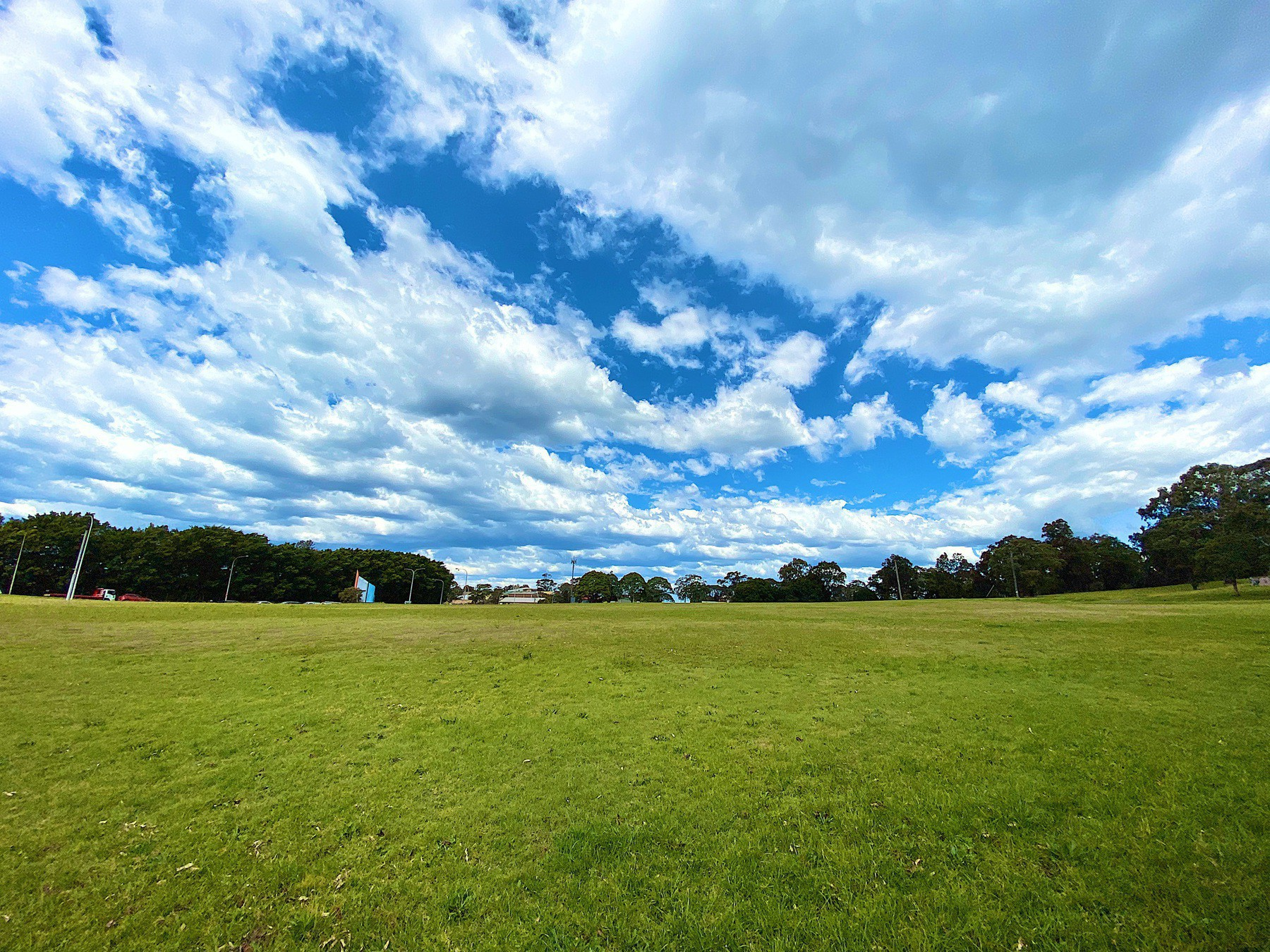 A green field with a blue sky full of fluffy clouds